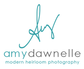 Amy Dawnelle modern heirloom photography
